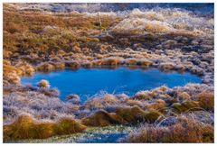 Die schönen Augen einer Landschaft... - oder: Hochmoor aus zweiter Hand...