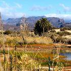 Die schönen Seiten von Gran Canaria