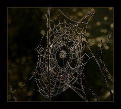"Die Schönheit des Todes... (5. der Serie  ""Mecklenbruch"")"