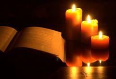 Die schönste Art zu Lesen