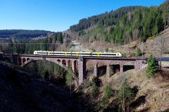 Die Schwarzwald-S-Bahn unterwegs