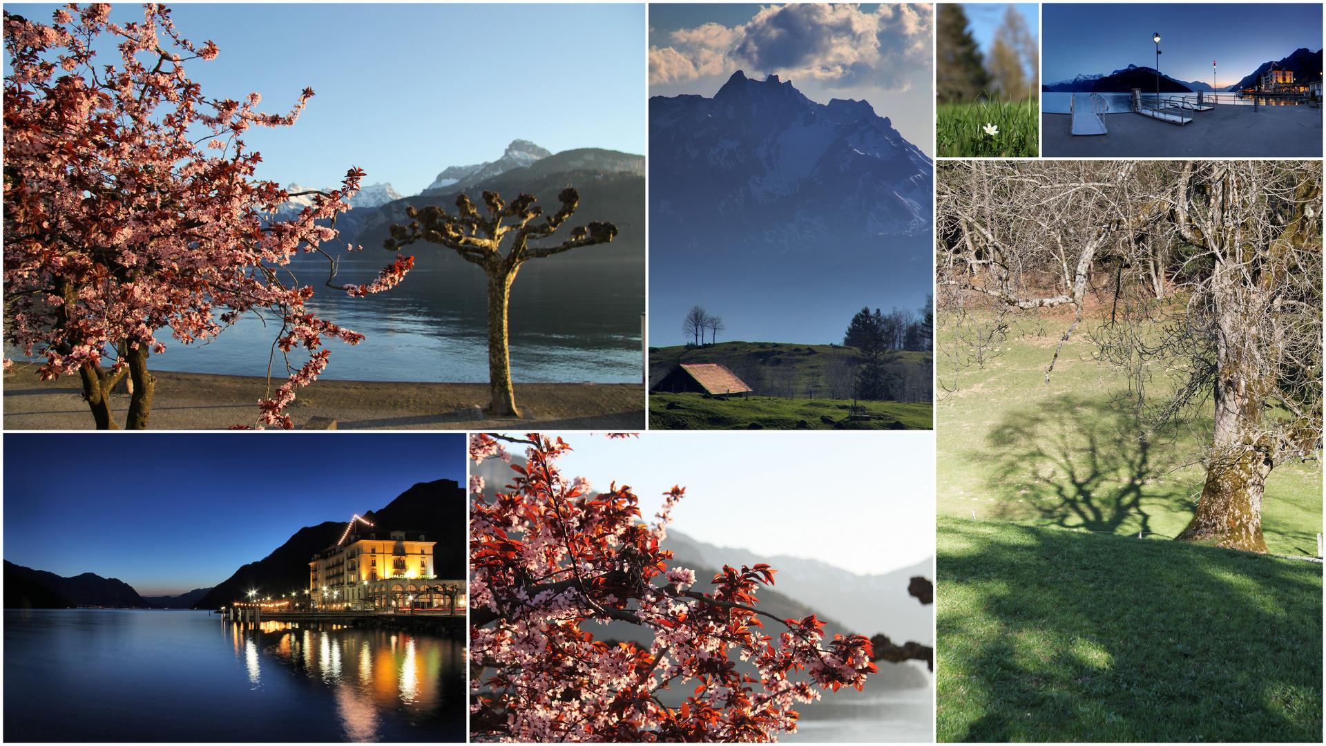 Die Schweiz im März