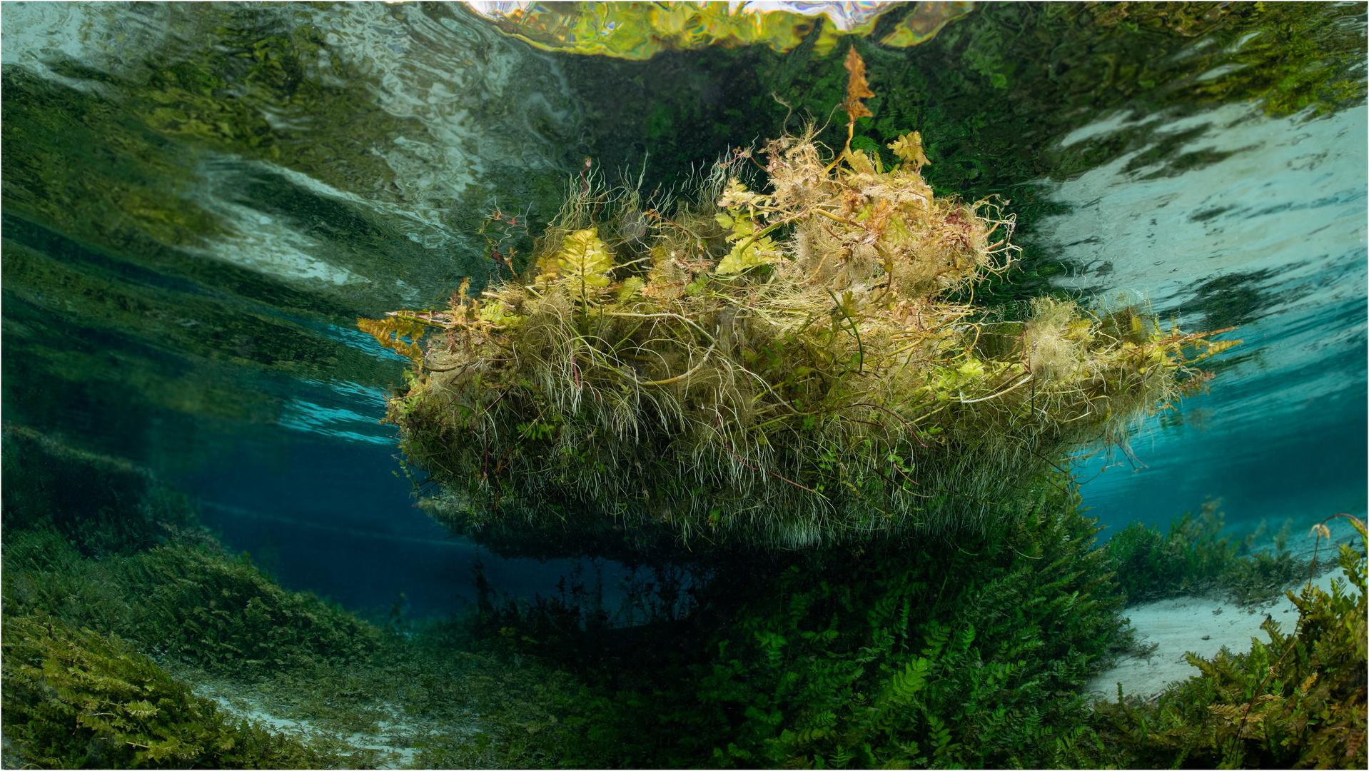 Die Schwimmende Insel