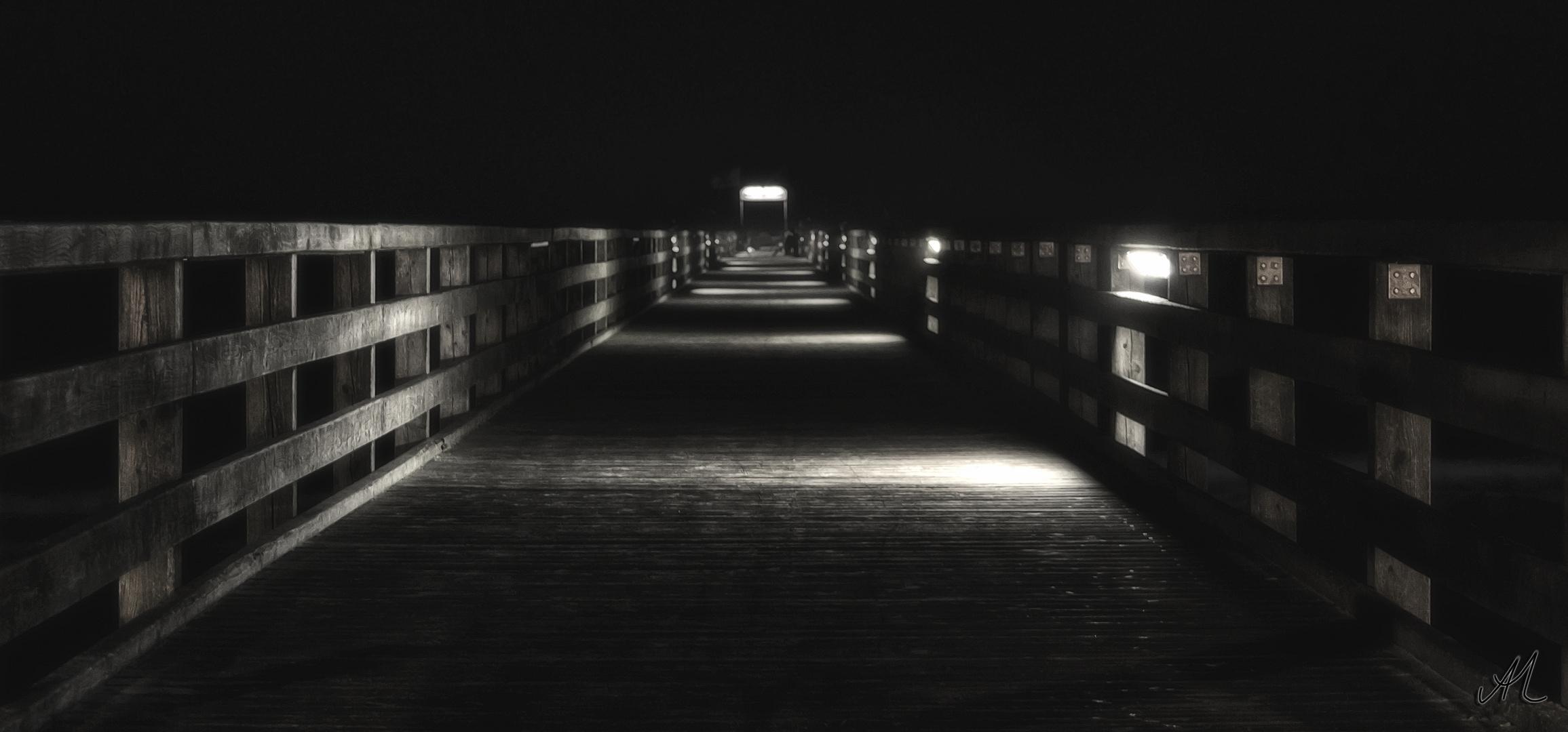 Die Seebrücke bei Nacht
