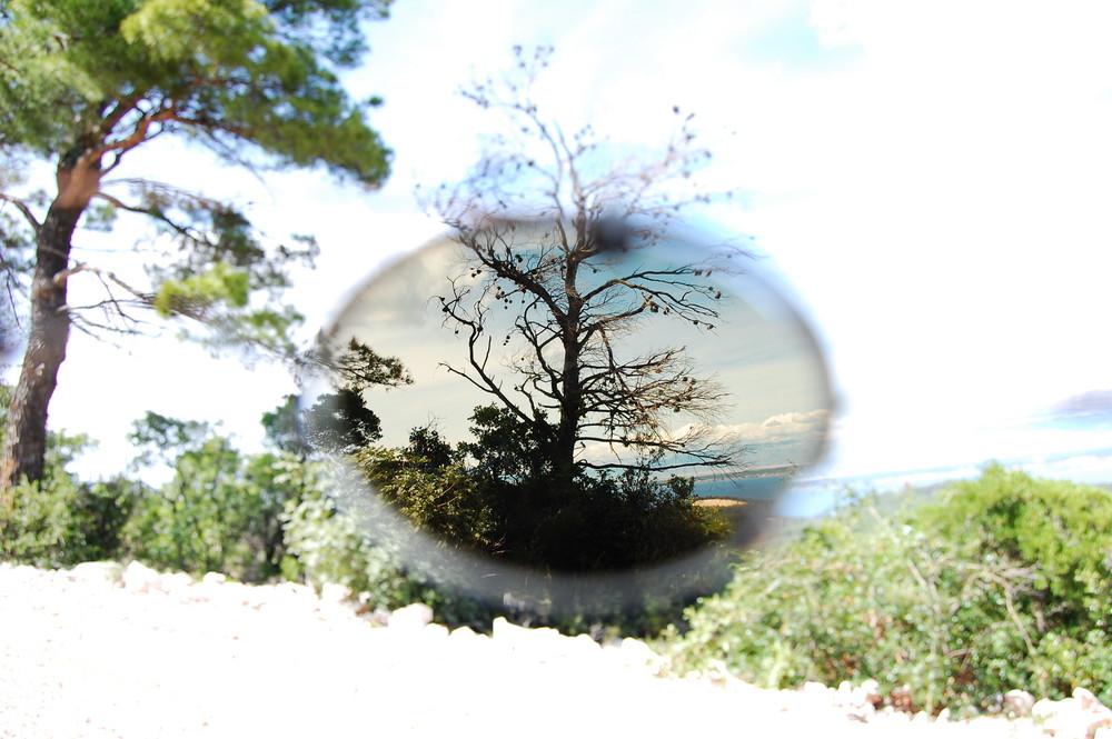 Die Sicht des Brillenträgers