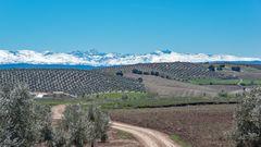 Die Sierra Nevada mit ihren schneebedeckten Höhen