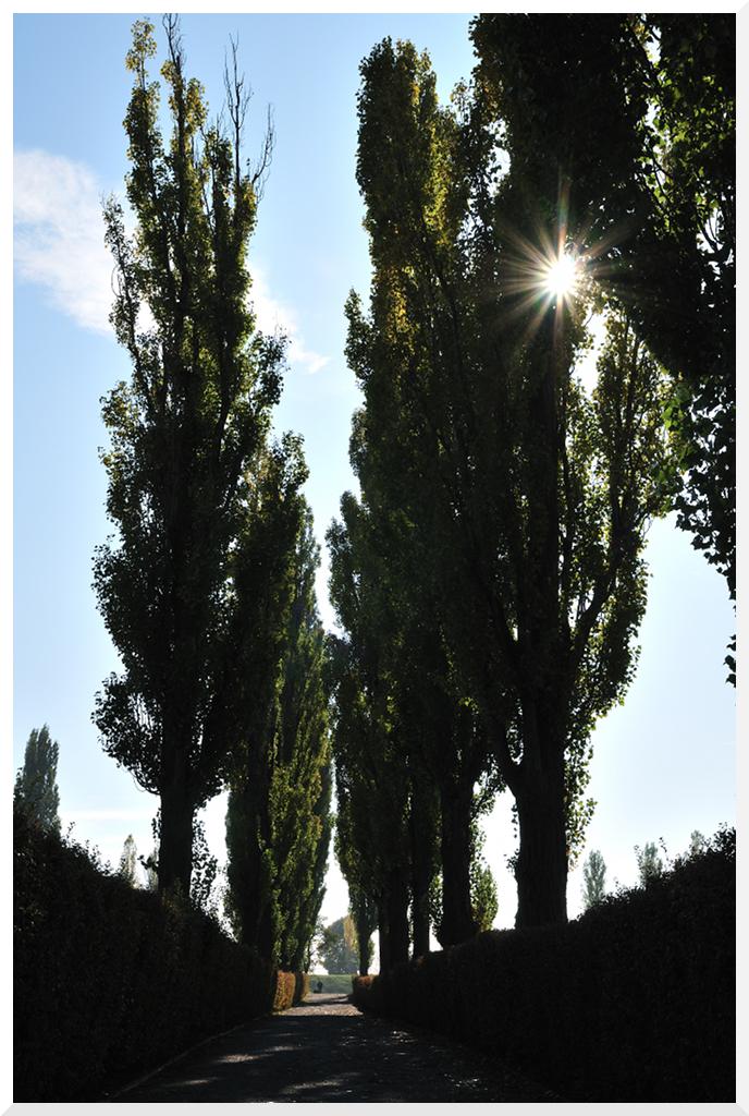 Die Sonne ....