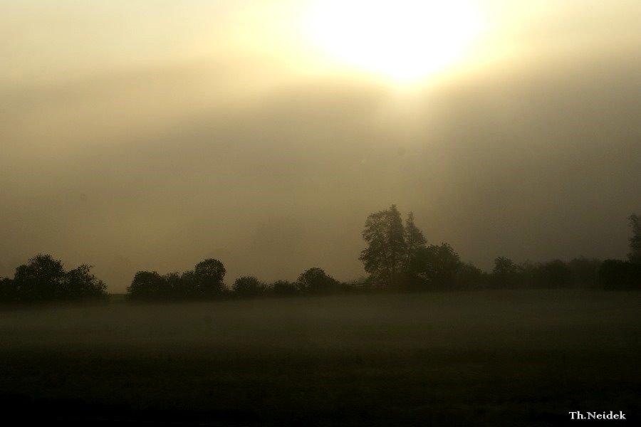 Die Sonne dringt kaum durch