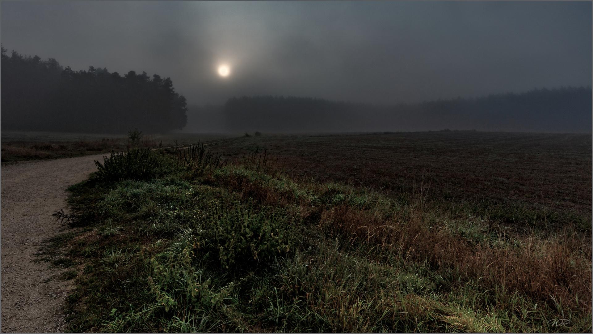 Die Sonne durchbricht den Nebel - 1