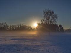 Die Sonne geht über dem Naturschutzgebiet Hainberg auf...