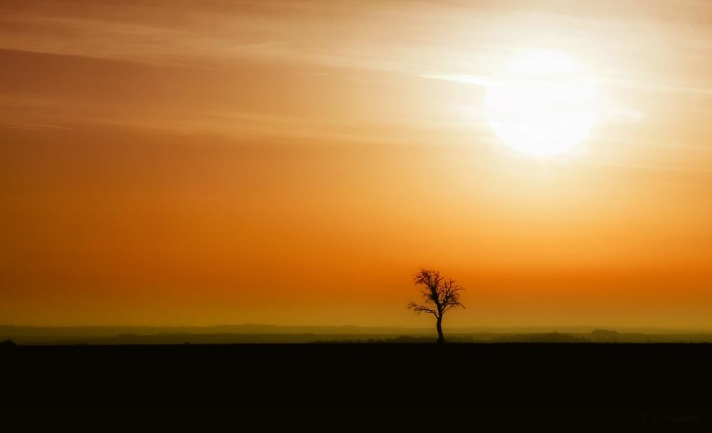 Die Sonne geht übrigens in Frankreich unter :-))))