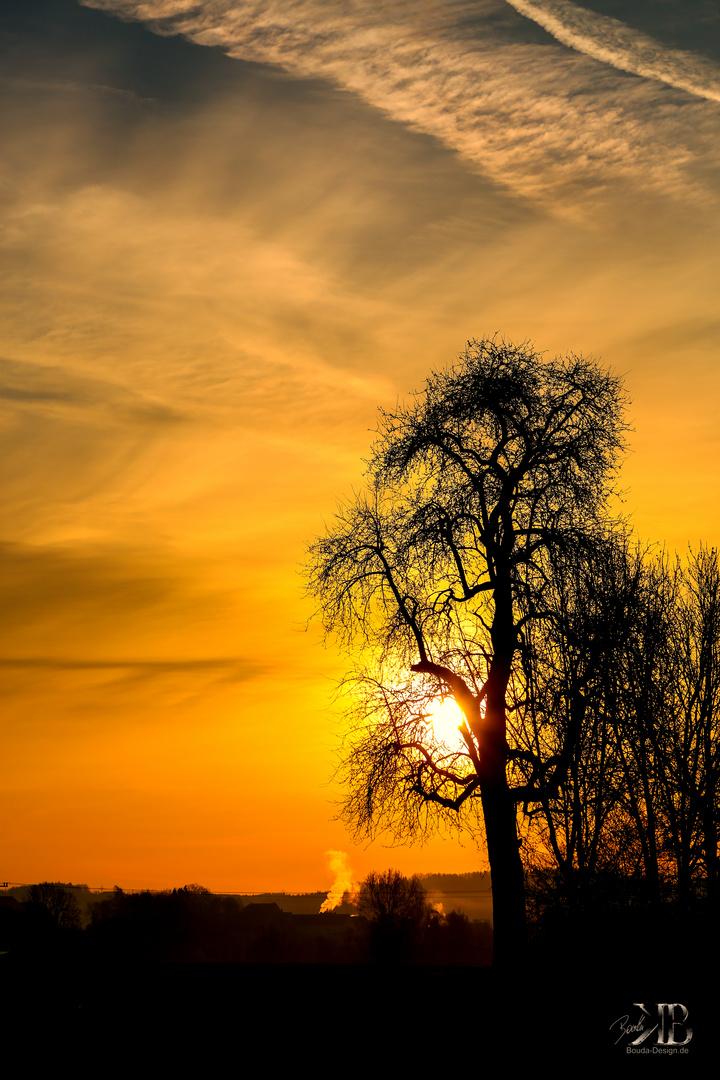 Die Sonne kommt heraus....