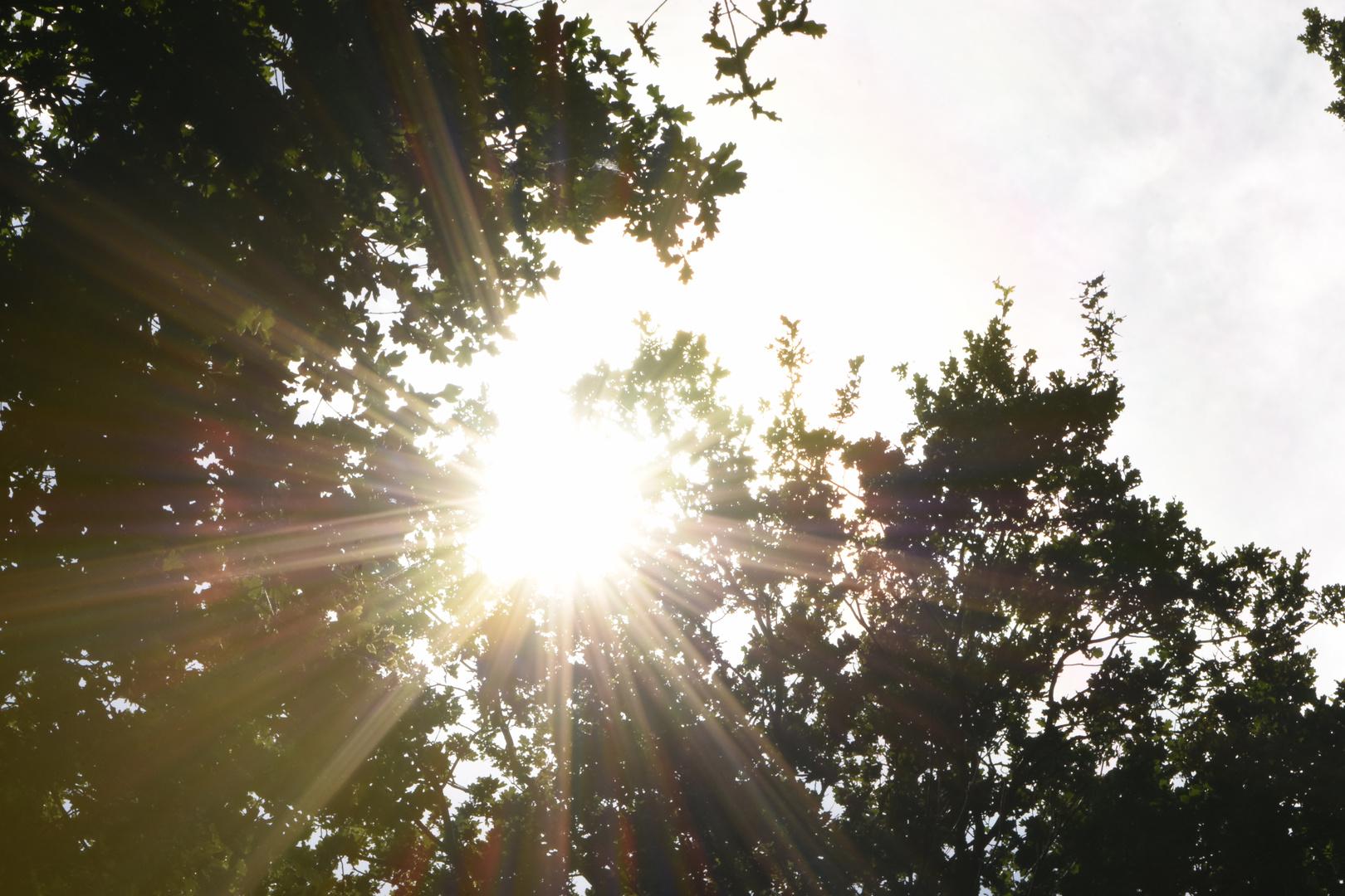 Die Sonne  mal anders gesehen