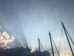 Die Sonne und die Segelmasten