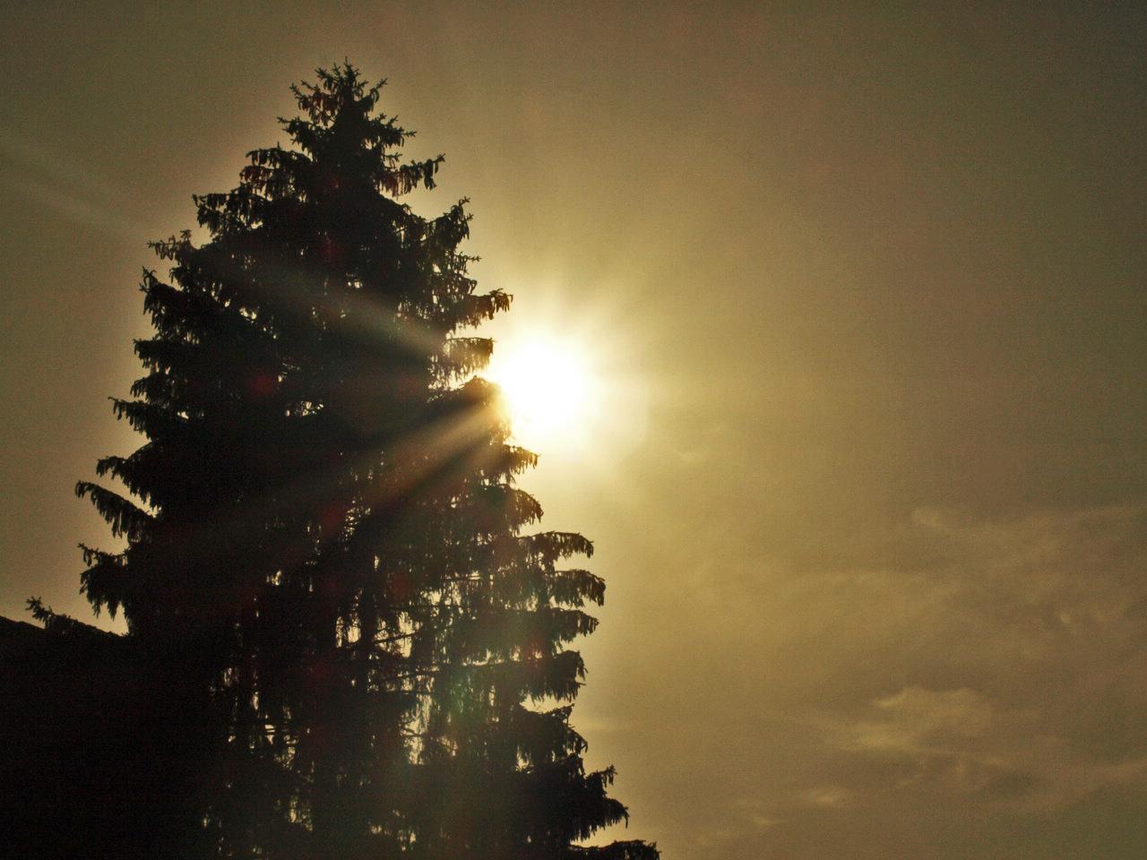 Die Sonne verabschiedet sich!