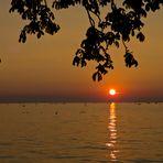 die Sonne versinkt im Bodensee