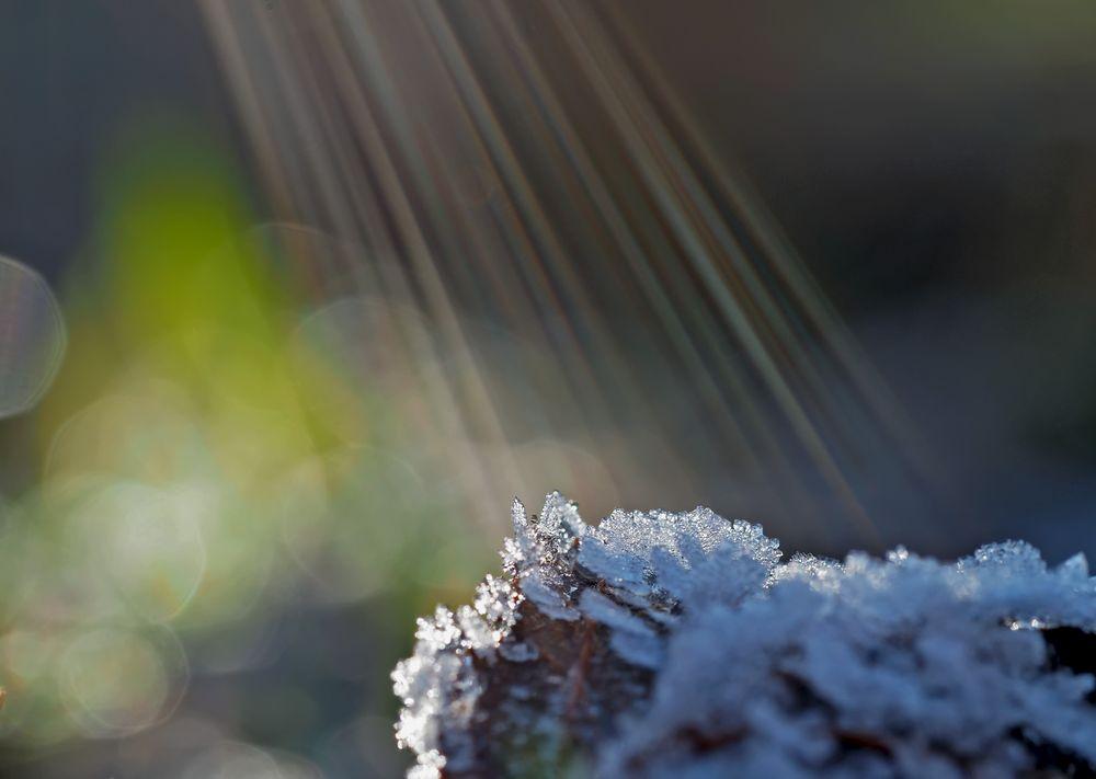Die Sonnenstrahlen lassen das Eis schmelzen!  -  Les rayons de soleil font fondre la glace.