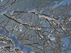 Die Sonnenstrahlen lassen den Schnee schmelzen... - Le soleil fait fondre la neige!