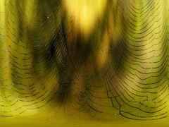 Die Spinne als Künstlerin... - Une petite oeuvre d'art d'une araignée...