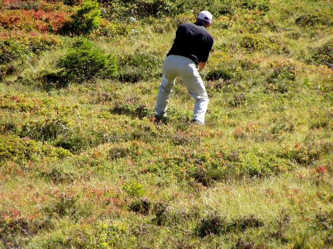 Die spinnen die Golfer ;)