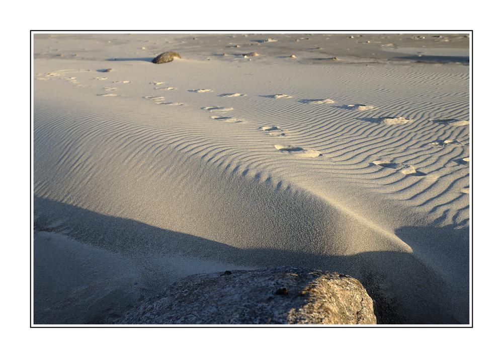 Die Spuren im Sand