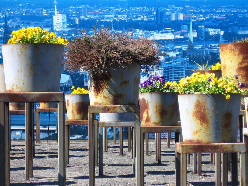 Die stehenden Gärten von Hamburg!