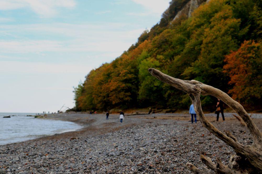 Die Steilküste auf Rügen