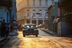 die Sternchen von Havanna
