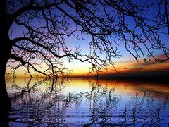 Die Stille des Abends