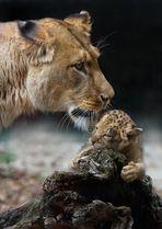 die stolze Mutter