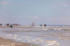 Die Strandläufer