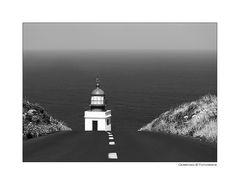 - Die Strasse zum Licht -