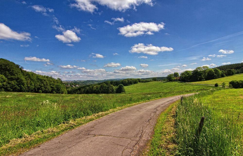 Die Straße zum Pferdehof