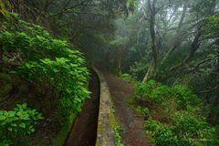 Die Suonen von La Palma