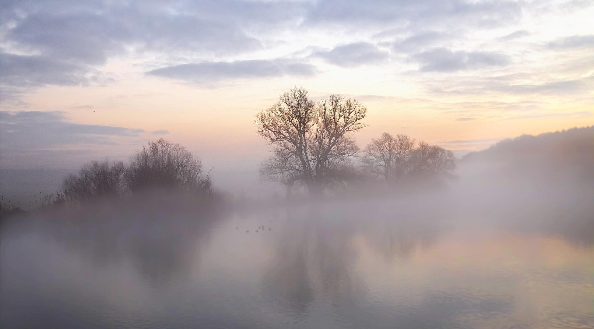 Die Symphonie des Nebels