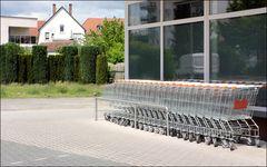 die Taube zwischen Einkaufswagen und Heckenkunst