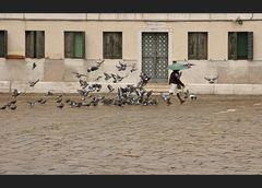Die Taubenfängerin vom Campo San Polo