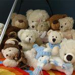 Die Teddybärenbande