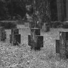 Die Toten mahnen
