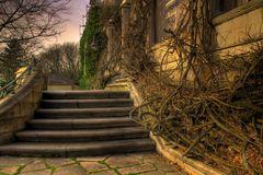 -Die Treppe-