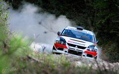 die Triestigtal Rallye ...