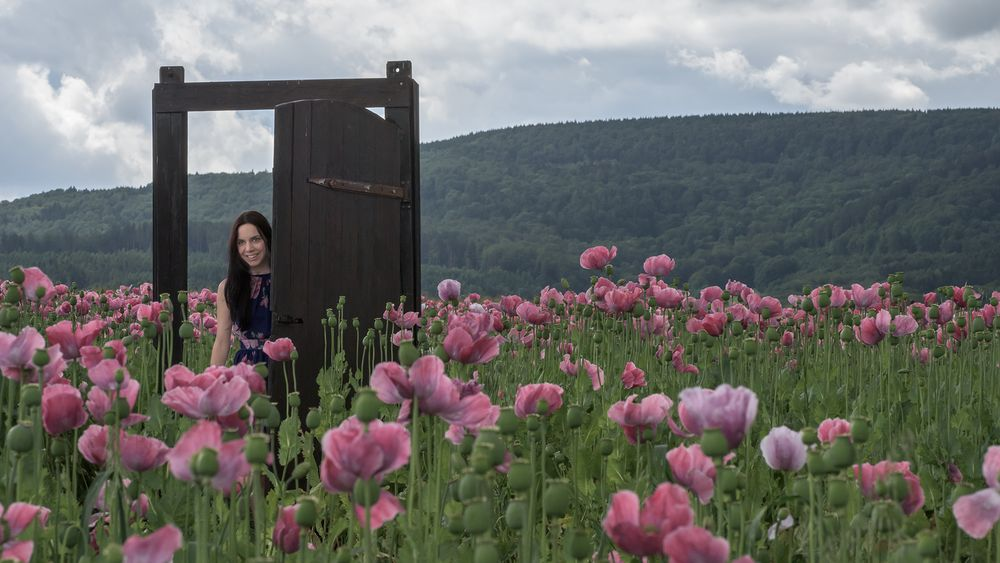 die Tür im Mohnfeld