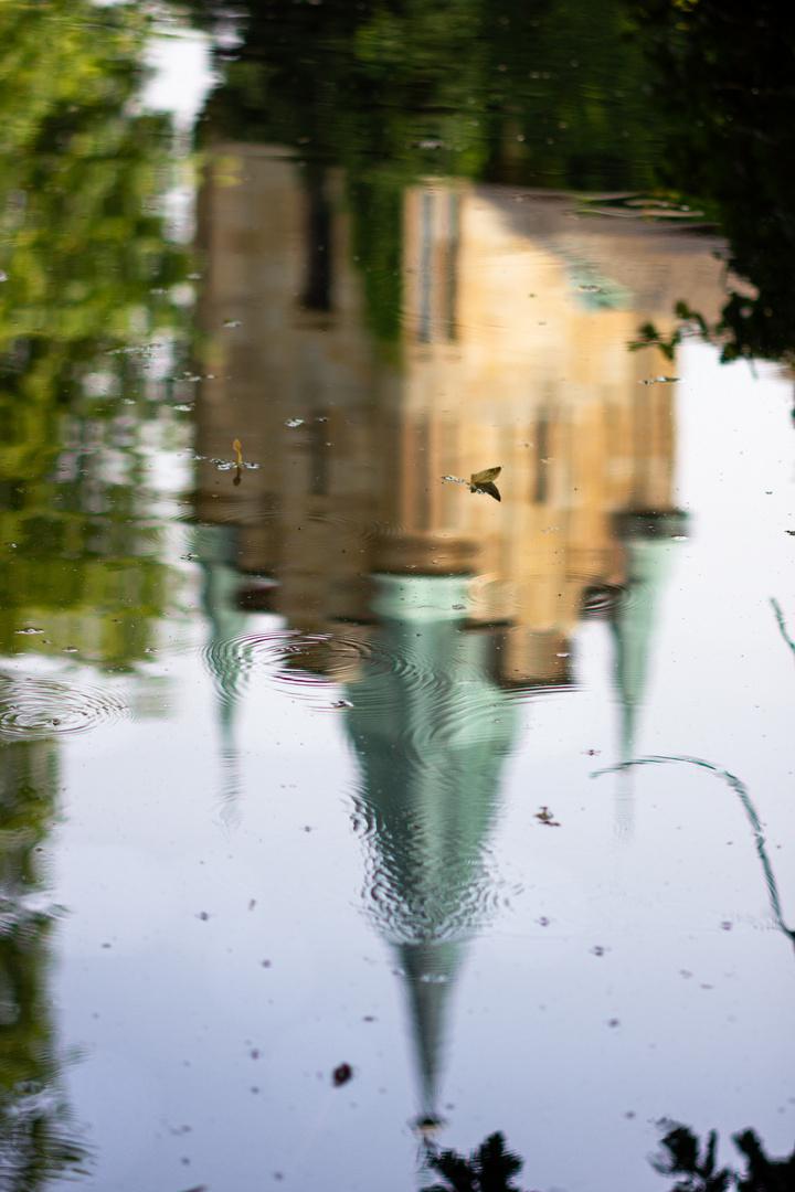 die vergänglichen Spuren eines Wasserfloh-Ballets