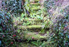 die vergessene Treppe
