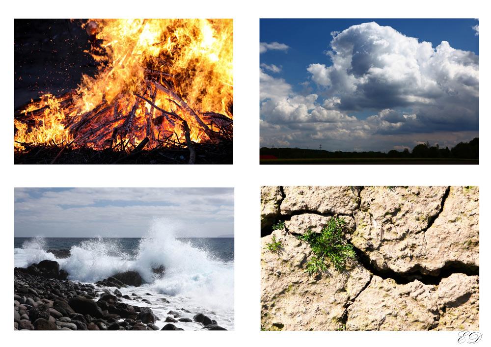 Vier Bilder
