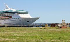 Die Vision of the Seas in Tallinn