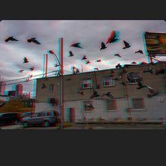 »Die Vögel« 3-D