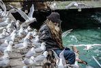 """""""Die Vögel"""" … im Hafen von Queenstown, Neuseeland"""
