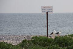 die Wächter des Strandes ...