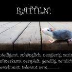 """""""Die Wahrheit über Ratten"""""""